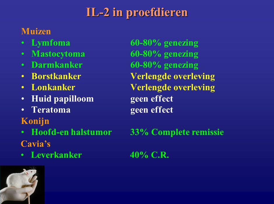 IL-2 in proefdieren Muizen Lymfoma 60-80% genezing