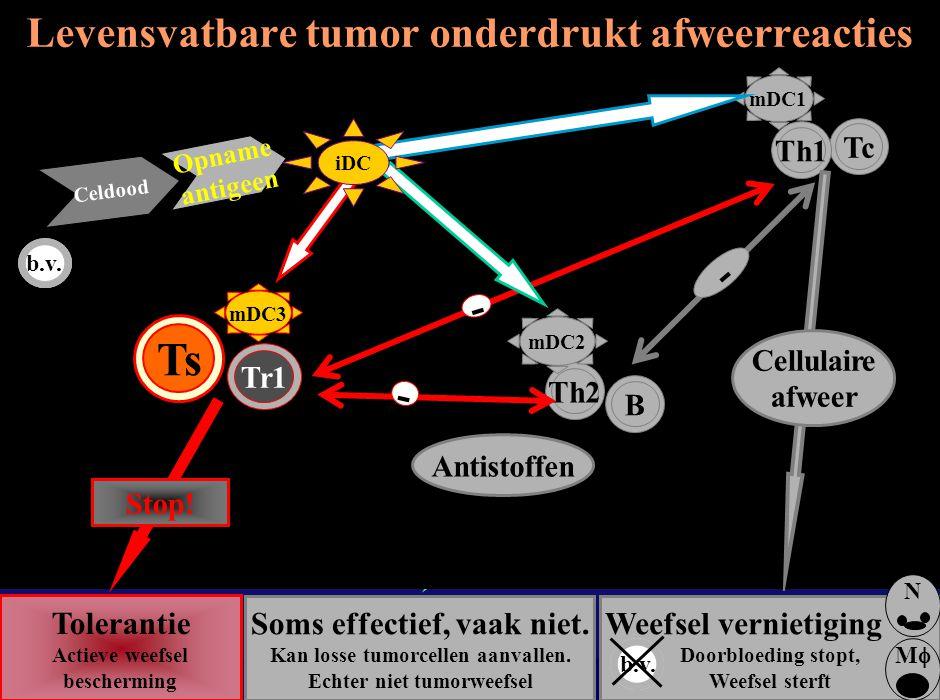 Levensvatbare tumor onderdrukt afweerreacties