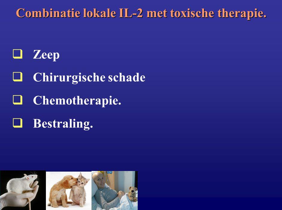 Combinatie lokale IL-2 met toxische therapie.