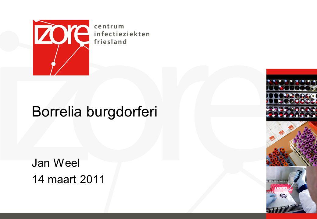 Borrelia burgdorferi Jan Weel 14 maart 2011