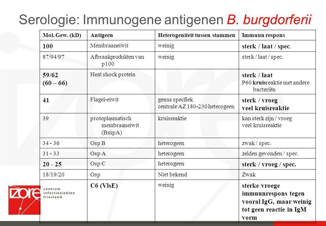 Serologie: Immunogene antigenen B. burgdorferii