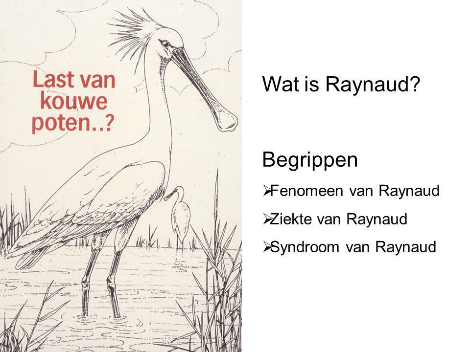 Wat is Raynaud Begrippen Fenomeen van Raynaud Ziekte van Raynaud