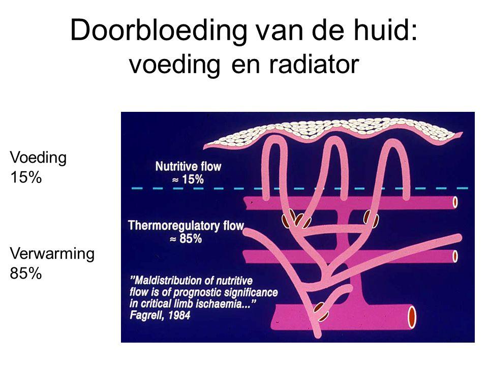 Doorbloeding van de huid: voeding en radiator