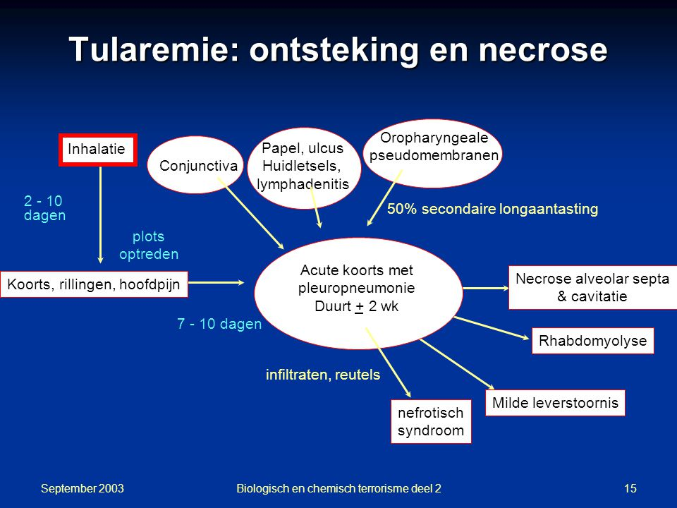 Tularemie: ontsteking en necrose