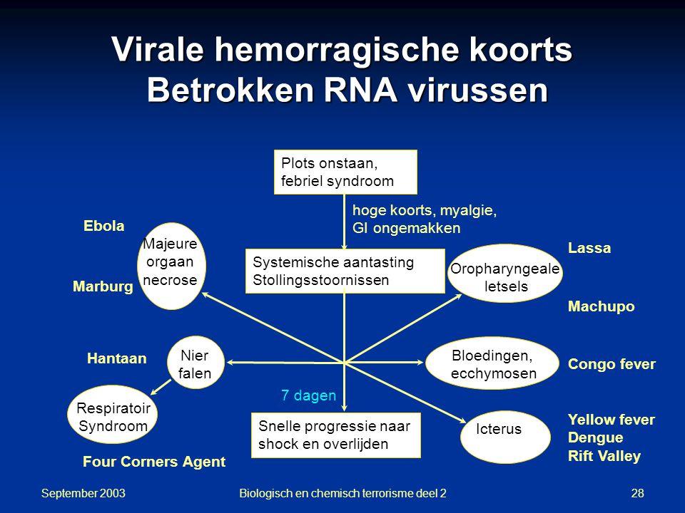 Virale hemorragische koorts Betrokken RNA virussen