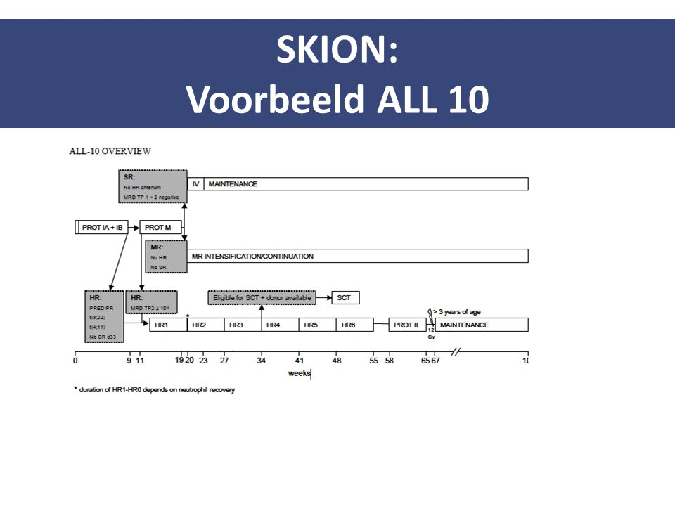 SKION: Voorbeeld ALL 10 13