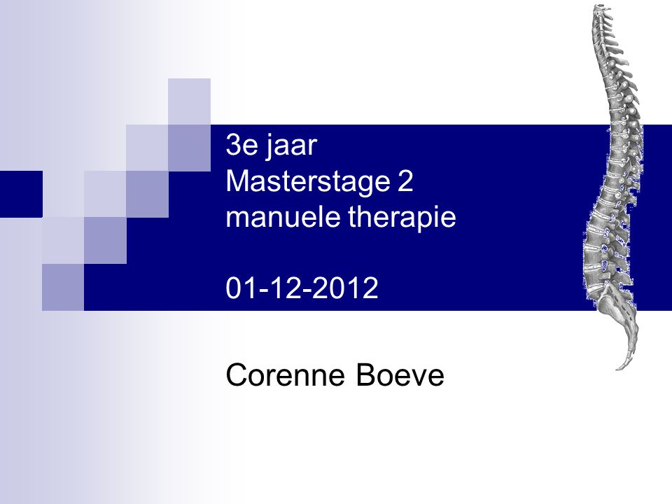 3e jaar Masterstage 2 manuele therapie 01-12-2012