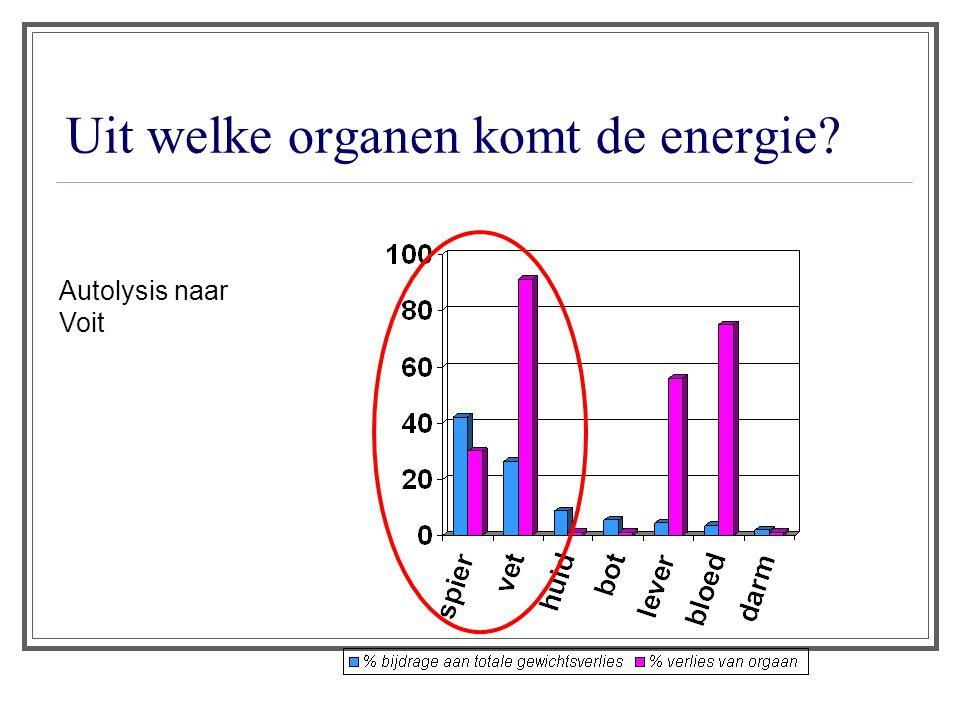 Uit welke organen komt de energie