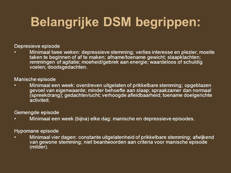 Belangrijke DSM begrippen: