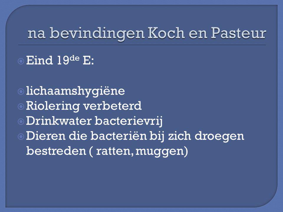 na bevindingen Koch en Pasteur