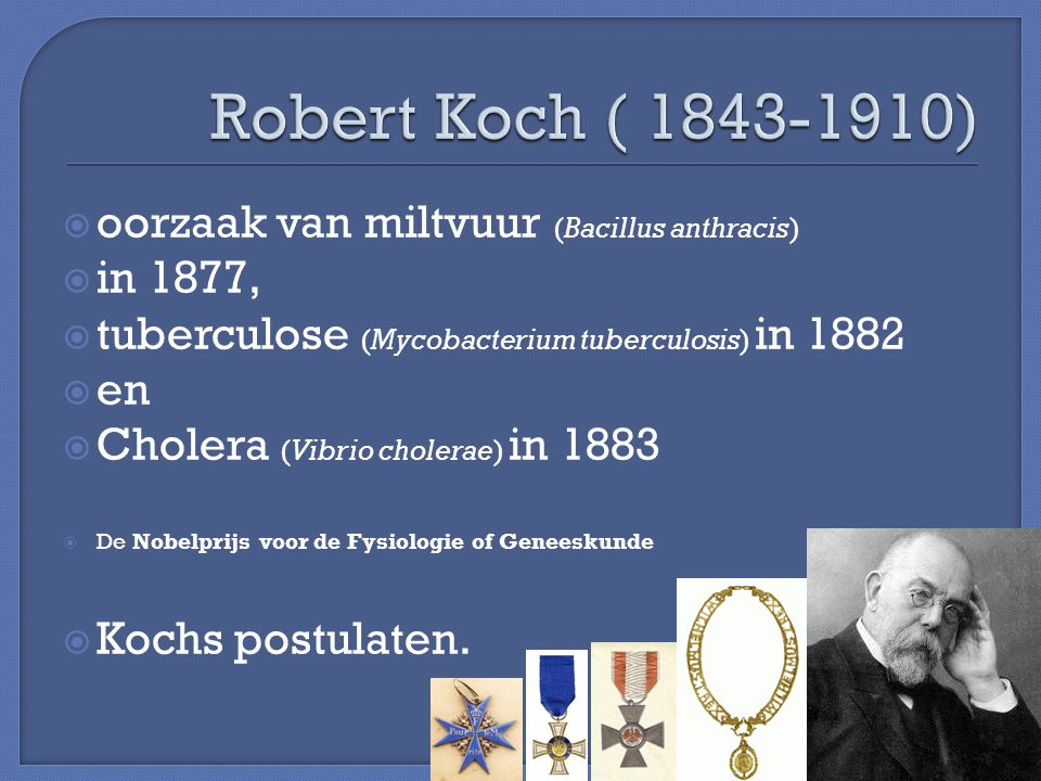 an overview of bacillus anthracis by robert koch in 1877 Anthrax: an overview robert koch (1877) bacillus anthracis is a large, gram positive, spore forming, non-motile bacillus.