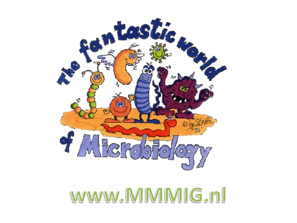 www.MMMIG.nl