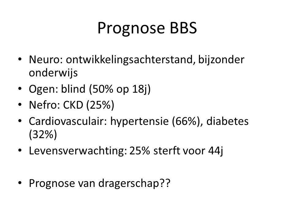 Prognose BBS Neuro: ontwikkelingsachterstand, bijzonder onderwijs