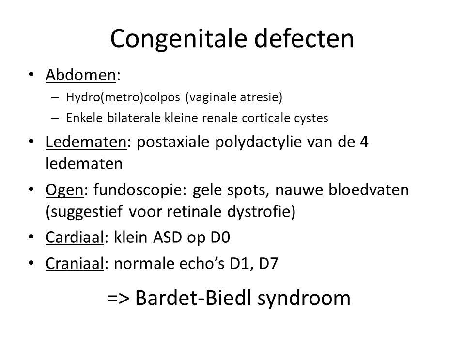 => Bardet-Biedl syndroom