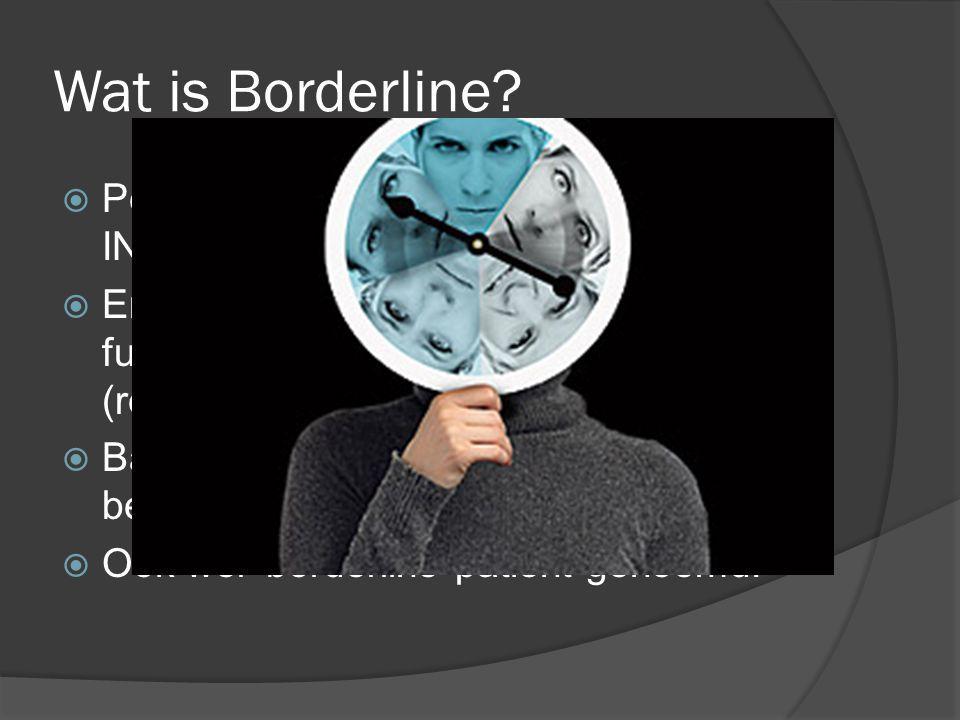 Wat is Borderline Persoonlijkheidsstoornis  INSTABILITEIT.