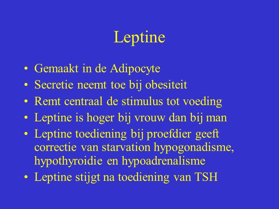 Leptine Gemaakt in de Adipocyte Secretie neemt toe bij obesiteit