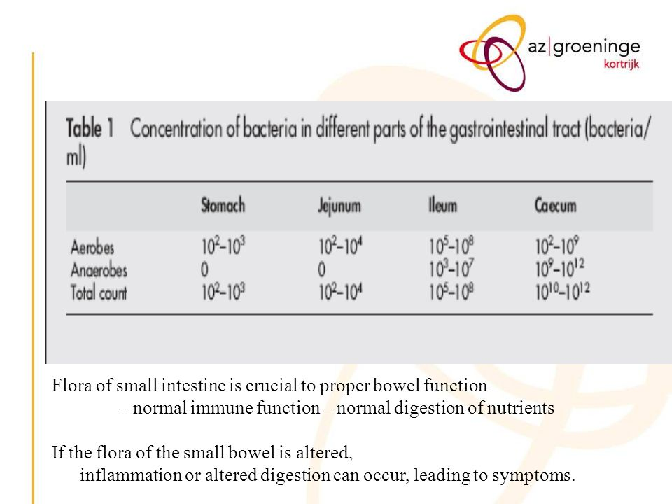 Flora of small intestine is crucial to proper bowel function