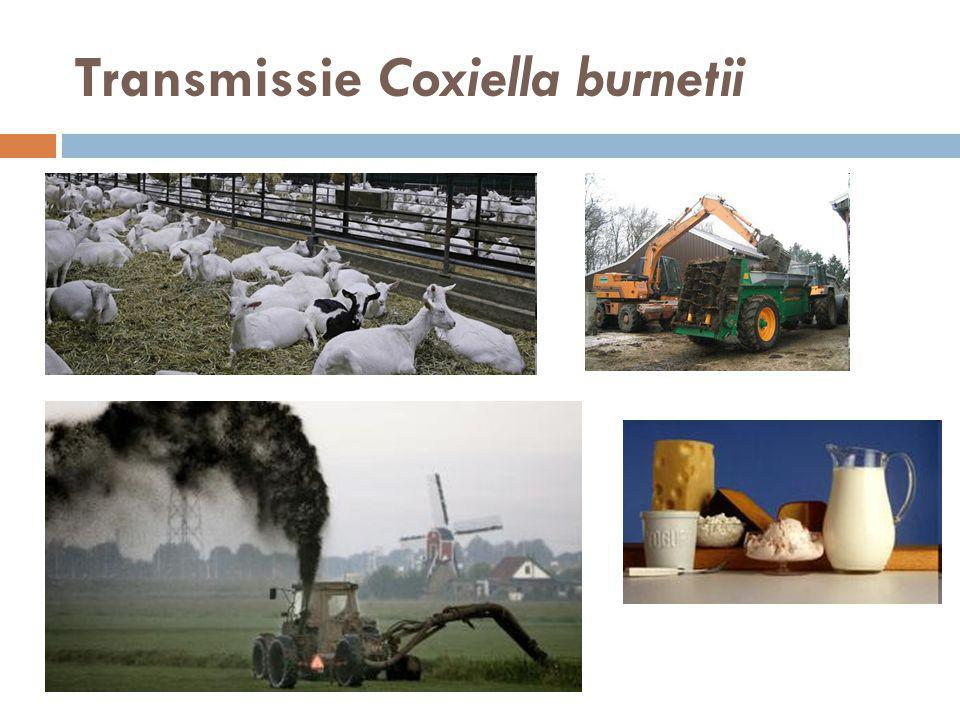 Transmissie Coxiella burnetii
