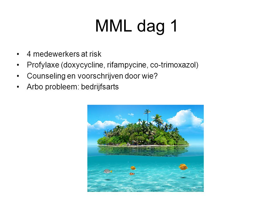 MML dag 1 4 medewerkers at risk