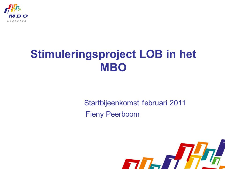 Stimuleringsproject LOB in het MBO