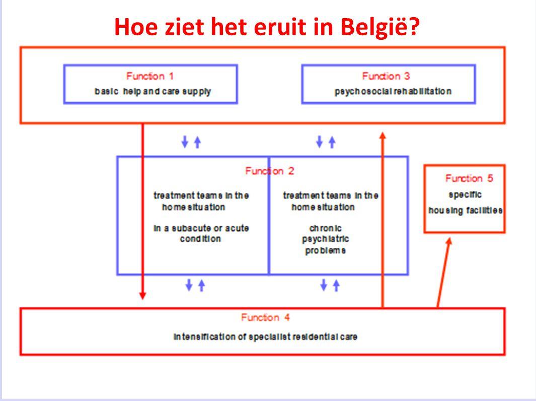 Hoe ziet het eruit in België