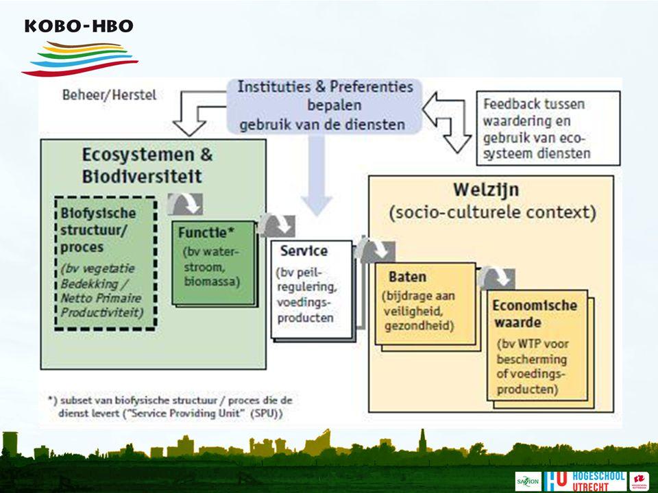 Deze figuur maakt het hele begrip van ecosysteemdiensten als een systeem zichtbaar: de biologische, chemische of natuurkundige structuur of het proces levert een functie, die voor mensen betekenis krijgt als ecosysteemdienst. Dat is de service, in het centrum van de figuur. Mensen profiteren daarvan (baten) en die baten zijn vaak ook in geld uit te drukken (economische waarde).