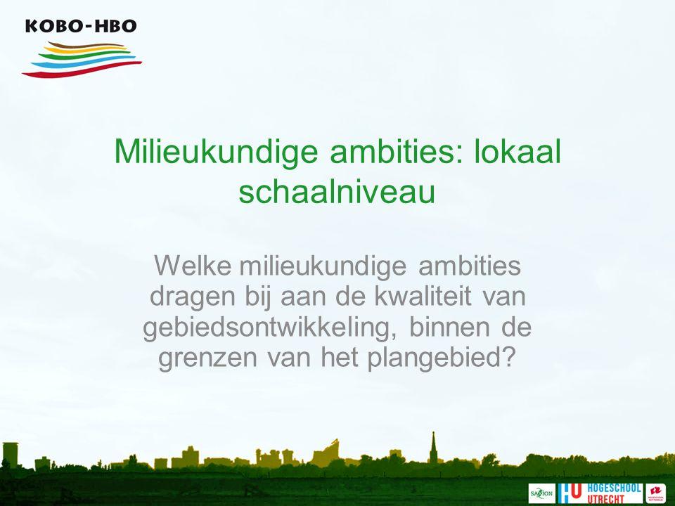 Milieukundige ambities: lokaal schaalniveau