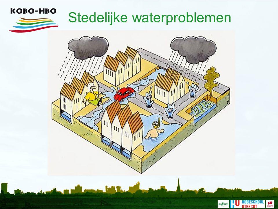 Stedelijke waterproblemen