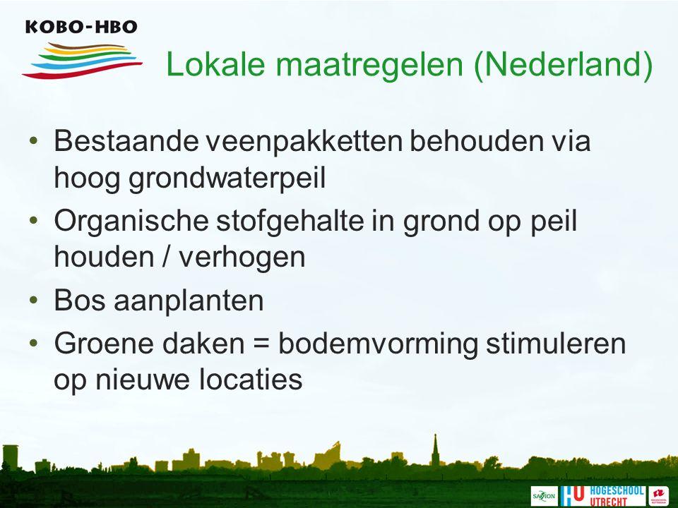 Lokale maatregelen (Nederland)