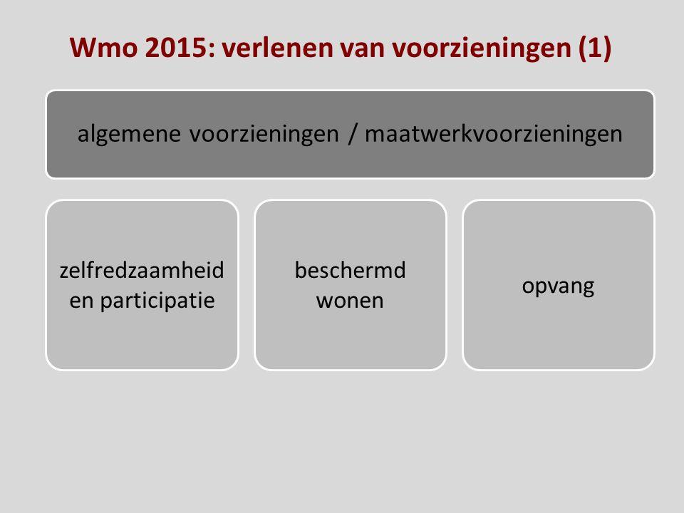 Wmo 2015: verlenen van voorzieningen (1)