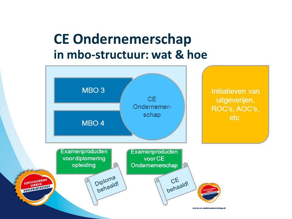 CE Ondernemerschap in mbo-structuur: wat & hoe