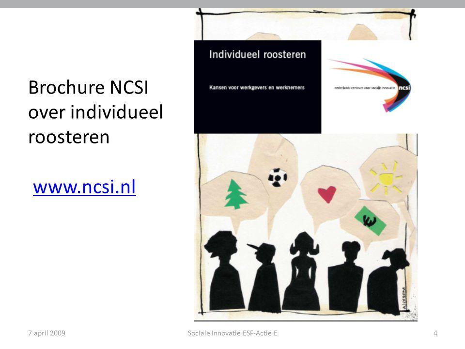 Brochure NCSI over individueel roosteren www.ncsi.nl