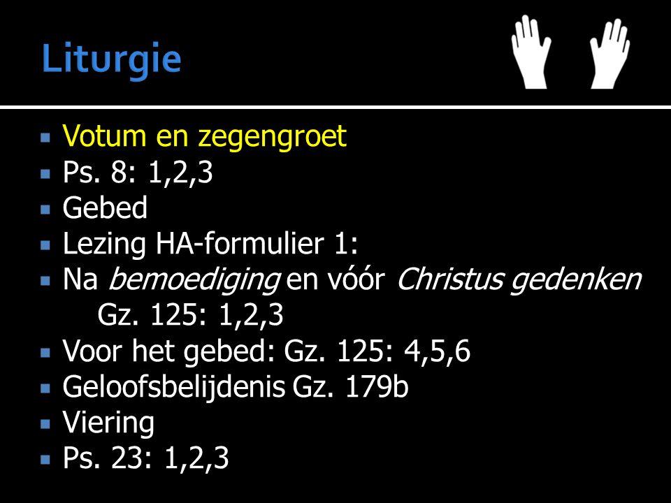 Liturgie Votum en zegengroet Ps. 8: 1,2,3 Gebed Lezing HA-formulier 1: