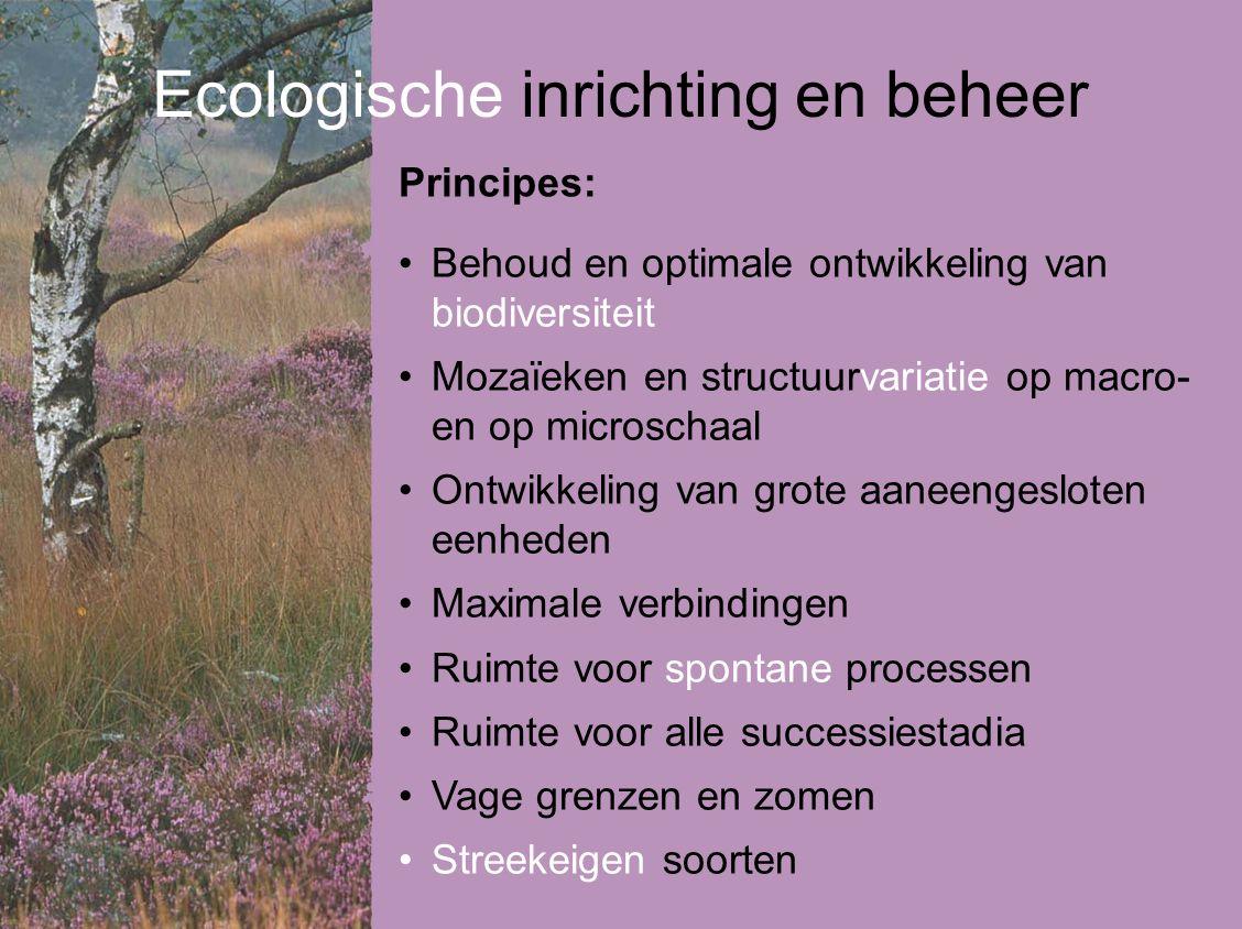 Ecologische inrichting en beheer