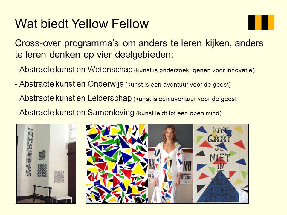 Wat biedt Yellow Fellow