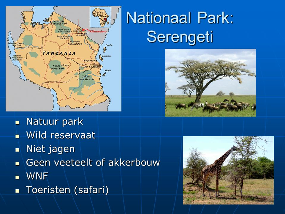 Nationaal Park: Serengeti