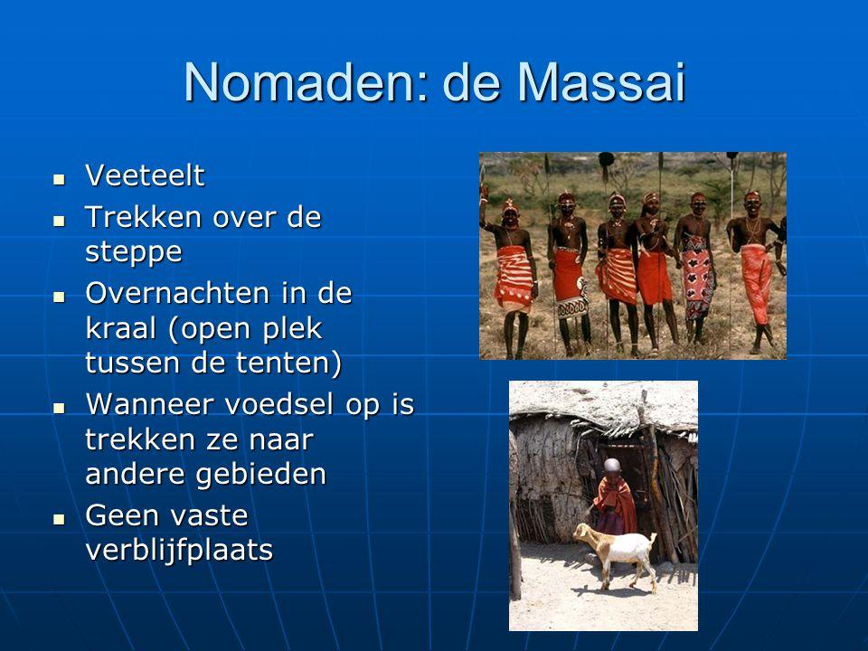 Nomaden: de Massai Veeteelt Trekken over de steppe