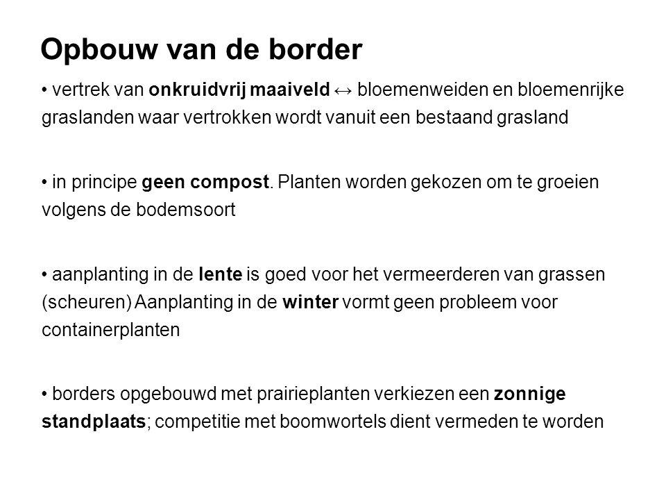 Opbouw van de border vertrek van onkruidvrij maaiveld ↔ bloemenweiden en bloemenrijke graslanden waar vertrokken wordt vanuit een bestaand grasland.
