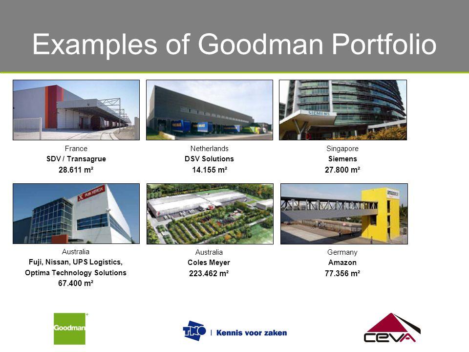 Examples of Goodman Portfolio