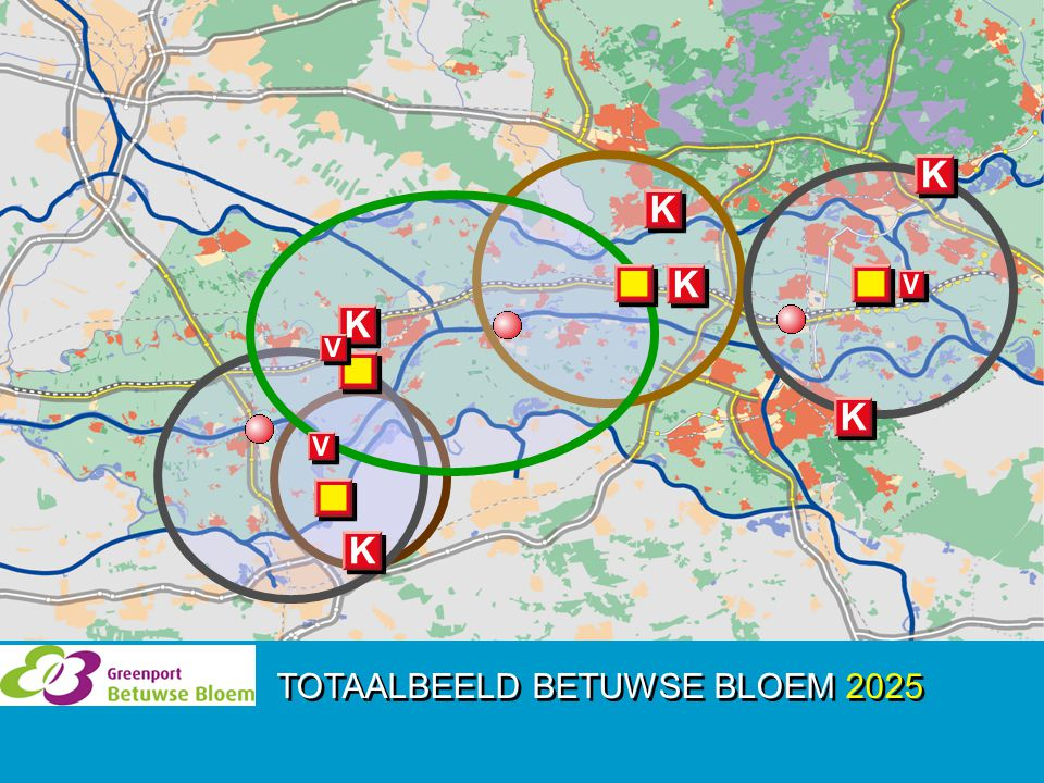 TOTAALBEELD BETUWSE BLOEM 2025