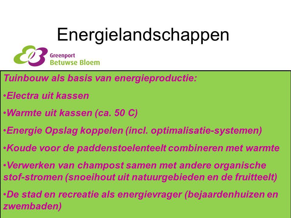 Energielandschappen Tuinbouw als basis van energieproductie: