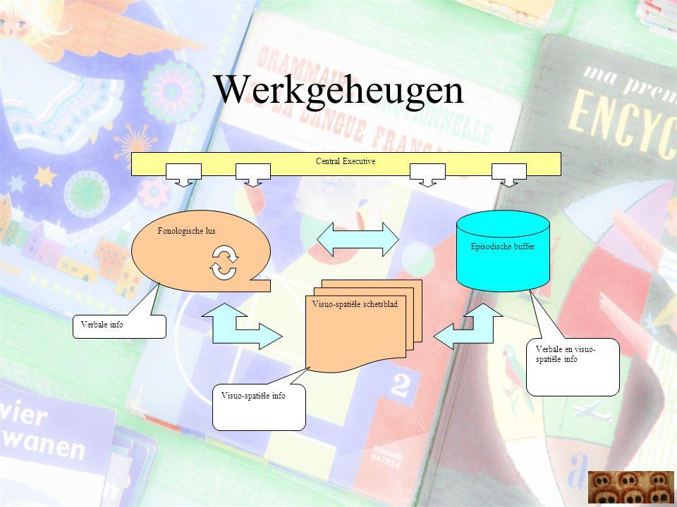 Werkgeheugen Central Executive Fonologische lus Episodische buffer