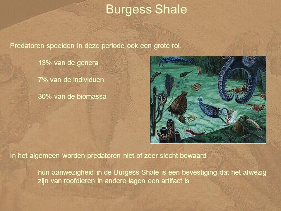 Burgess Shale Predatoren speelden in deze periode ook een grote rol.