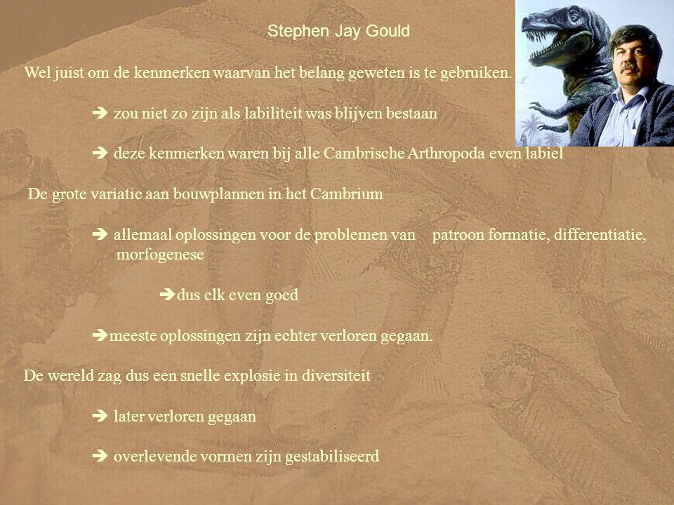 Stephen Jay Gould Wel juist om de kenmerken waarvan het belang geweten is te gebruiken.  zou niet zo zijn als labiliteit was blijven bestaan.