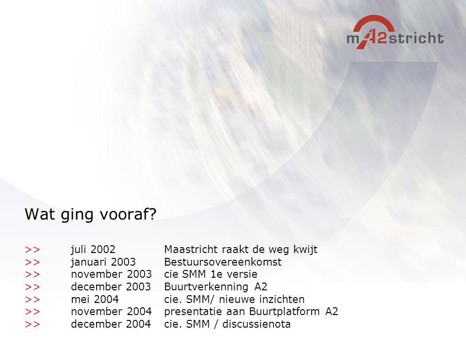 Wat ging vooraf >> juli 2002 Maastricht raakt de weg kwijt