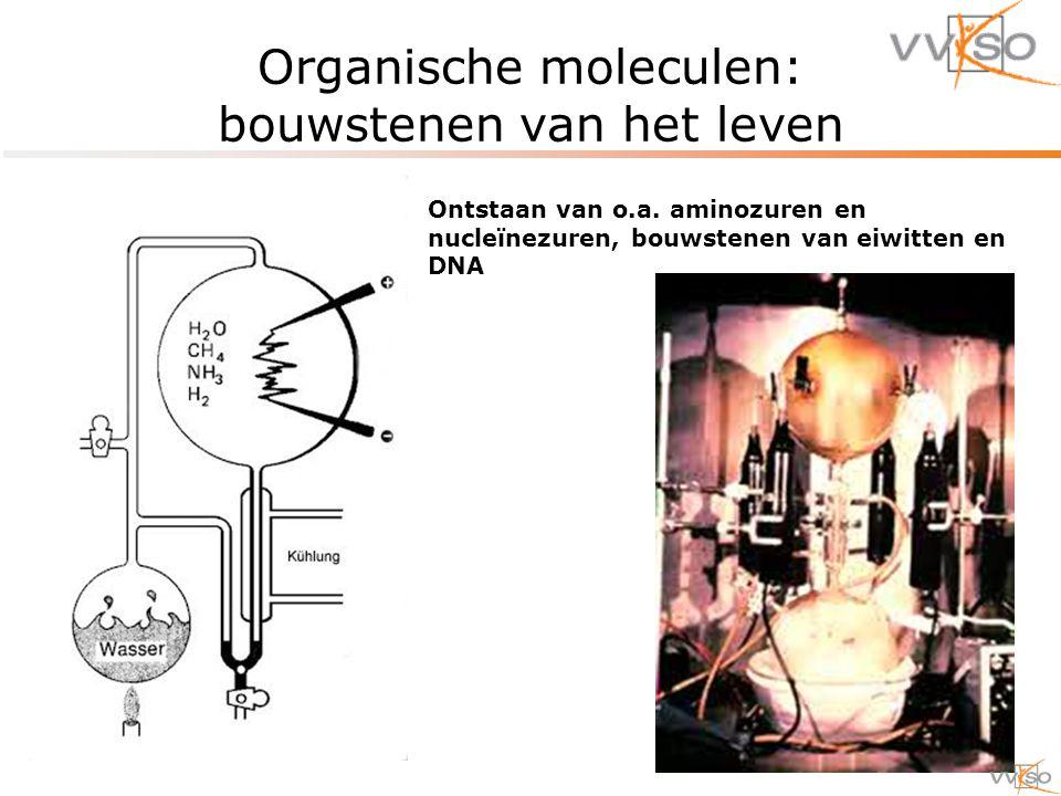 Organische moleculen: bouwstenen van het leven