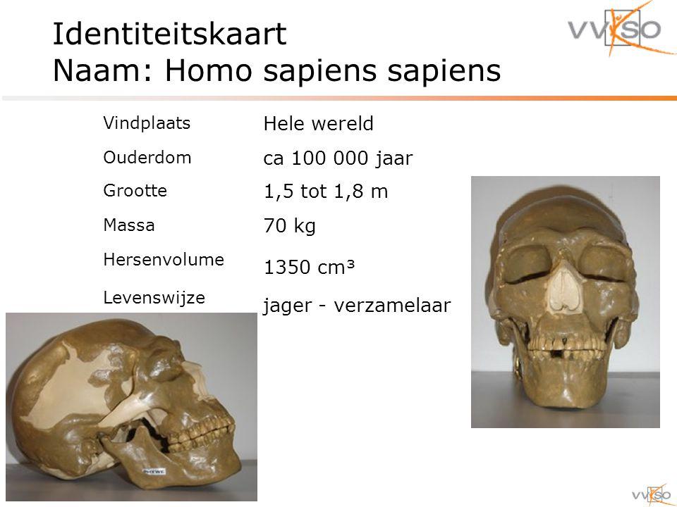 Identiteitskaart Naam: Homo sapiens sapiens