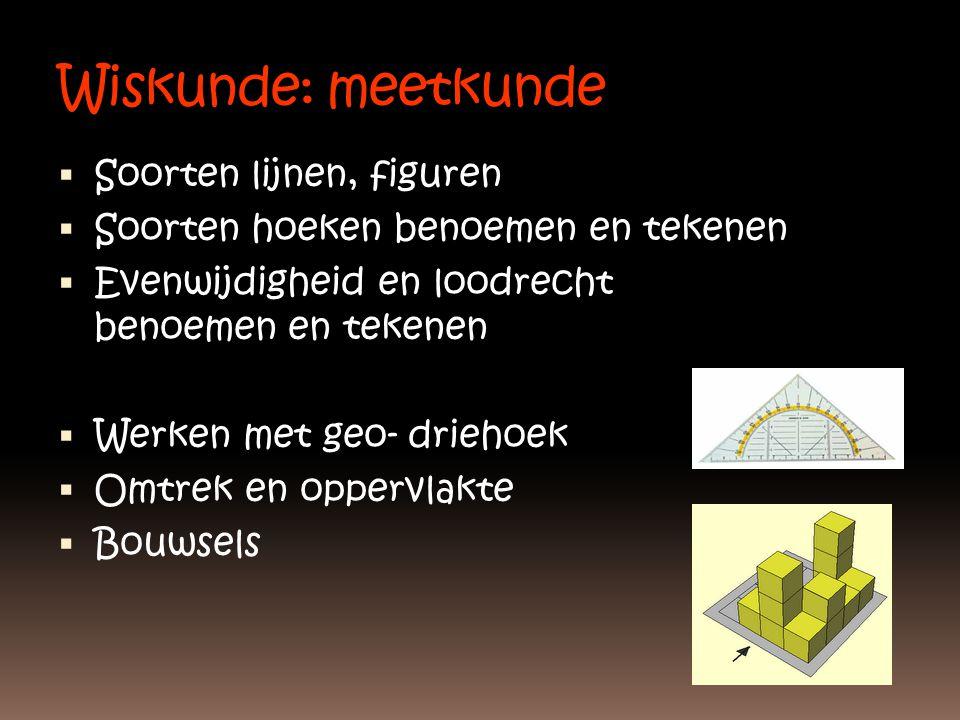 Wiskunde: meetkunde Soorten lijnen, figuren