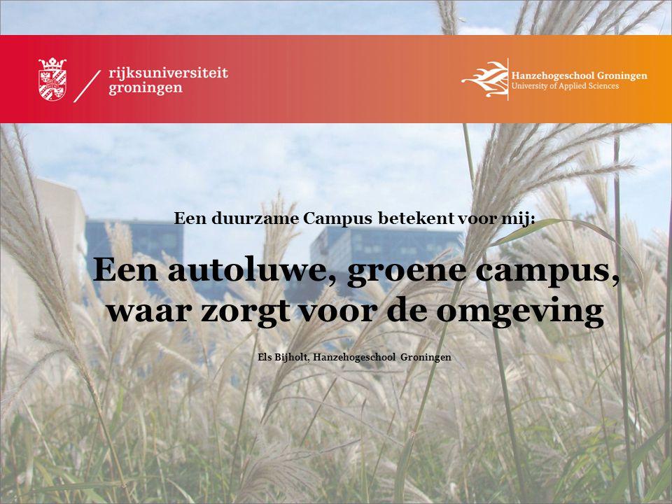 Els Bijholt, Hanzehogeschool Groningen