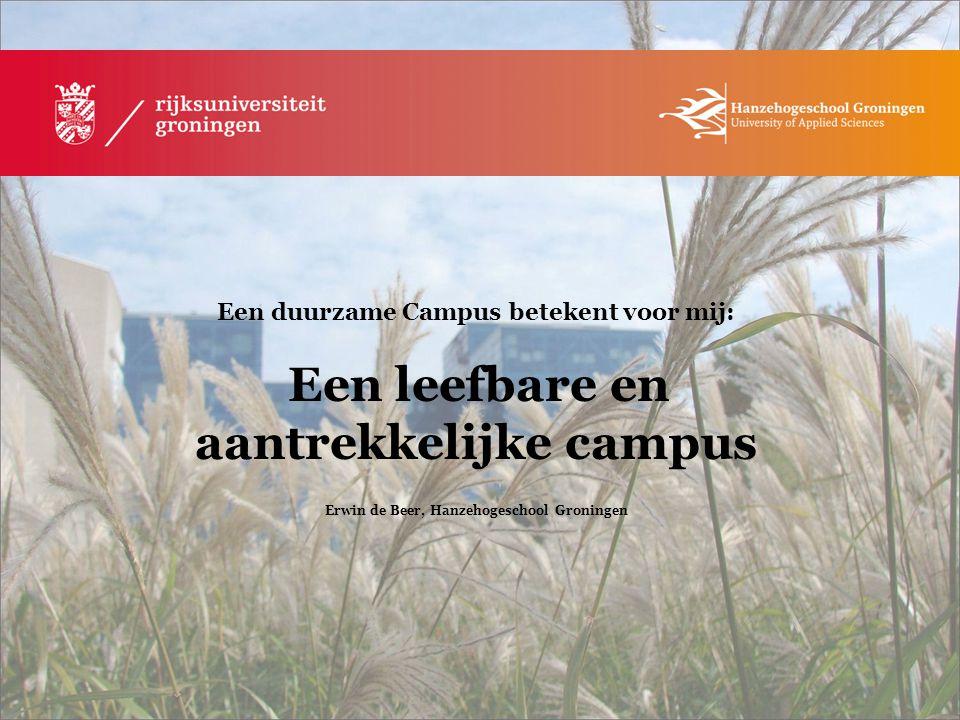 Erwin de Beer, Hanzehogeschool Groningen